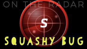 OTR Squashy Bug image
